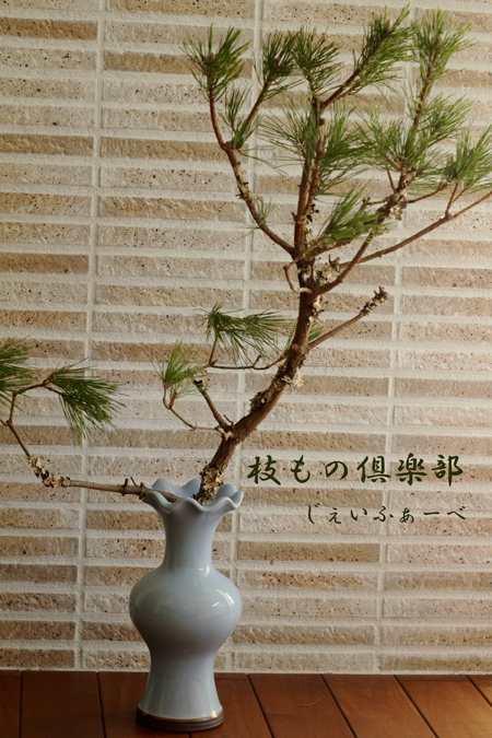 12月の枝もの倶楽部
